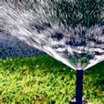 Sod-Sprinkler November