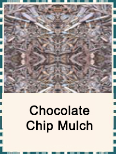 chocolatechipmulch