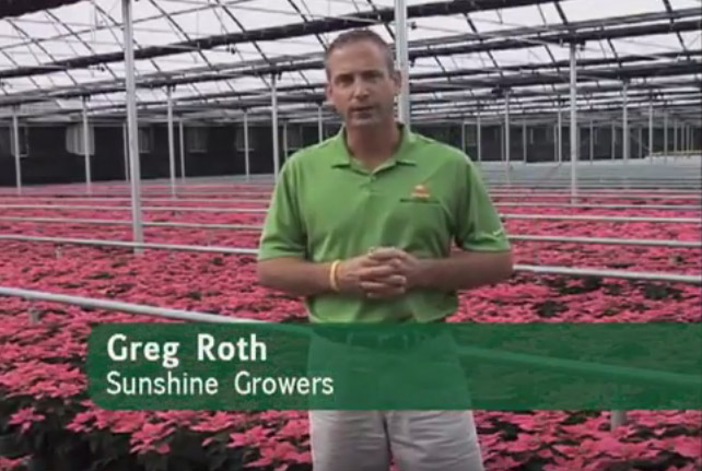 Virtual Garden Center Tour Sunshine Growers Nursery